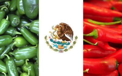 Les piments ou «Los Chiles», partie intégrante de la gastronomie mexicaine