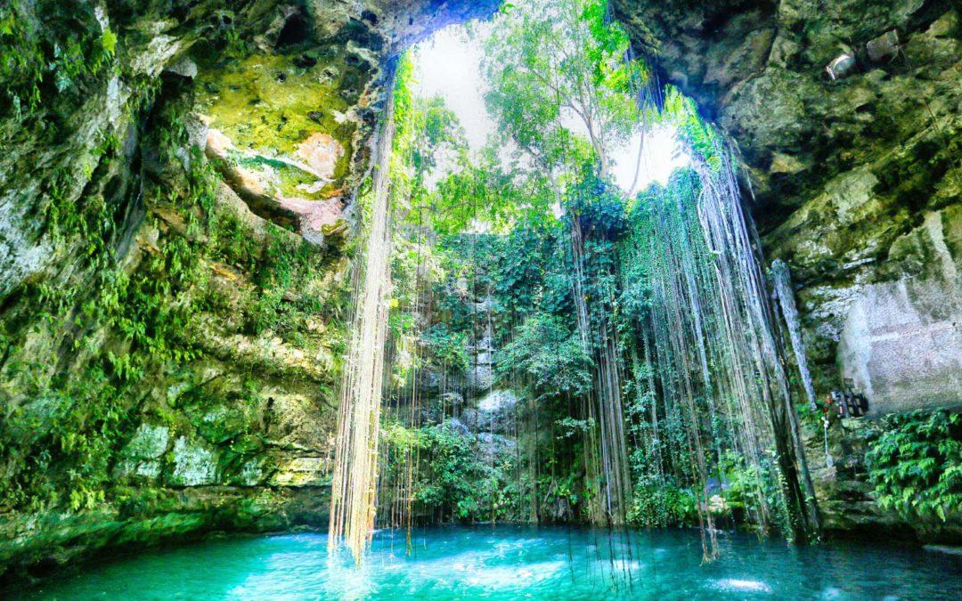 Les cenotes en Yucatan