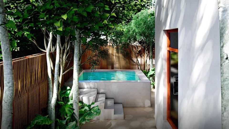 IMG_0692 - SELVA NORTE - Pelicano Properties - Playa del Carmen - Tulum - Cancun