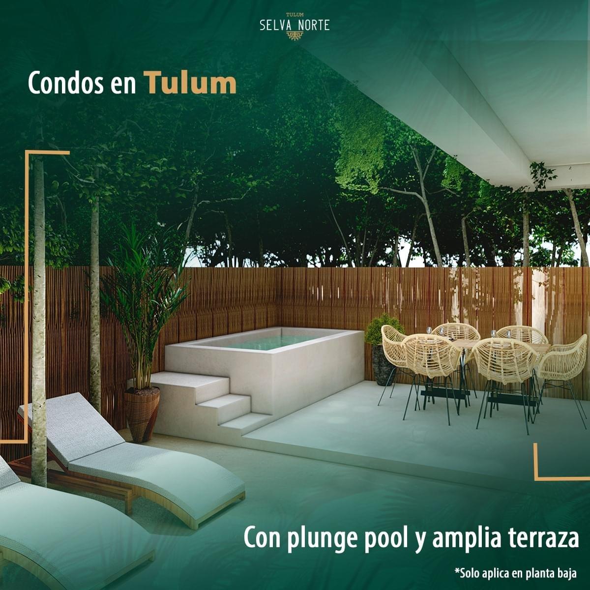 IMG_0871 - SELVA NORTE - Pelicano Properties - Playa del Carmen - Tulum - Cancun