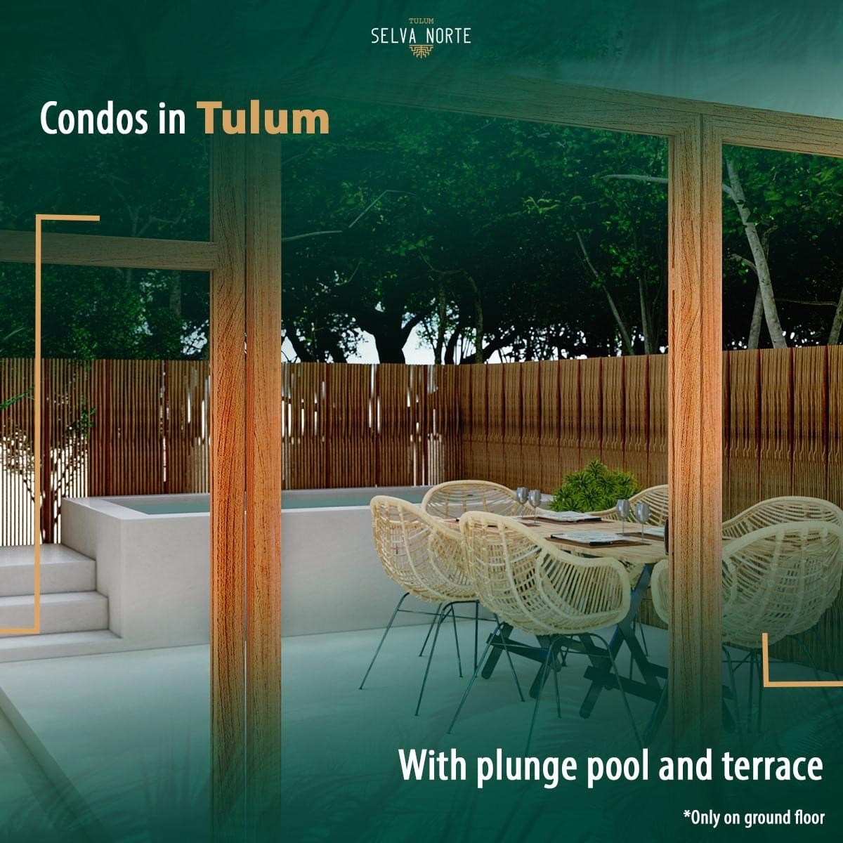 IMG_0889 - SELVA NORTE - Pelicano Properties - Playa del Carmen - Tulum - Cancun